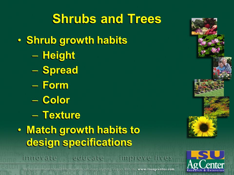 Shrubs and Trees Shrub growth habits –Height –Spread –Form –Color –Texture Match growth habits to design specifications Shrub growth habits –Height –S