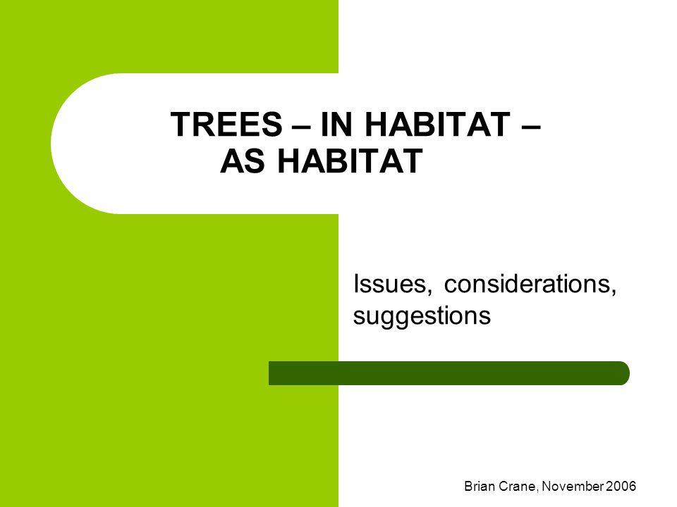 Brian Crane, November 2006 TREES – IN HABITAT – AS HABITAT Issues, considerations, suggestions
