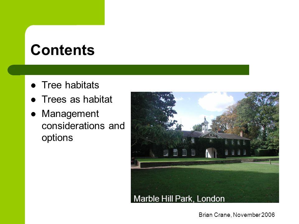 Brian Crane, November 2006 Contents Tree habitats Trees as habitat Management considerations and options Marble Hill Park, London