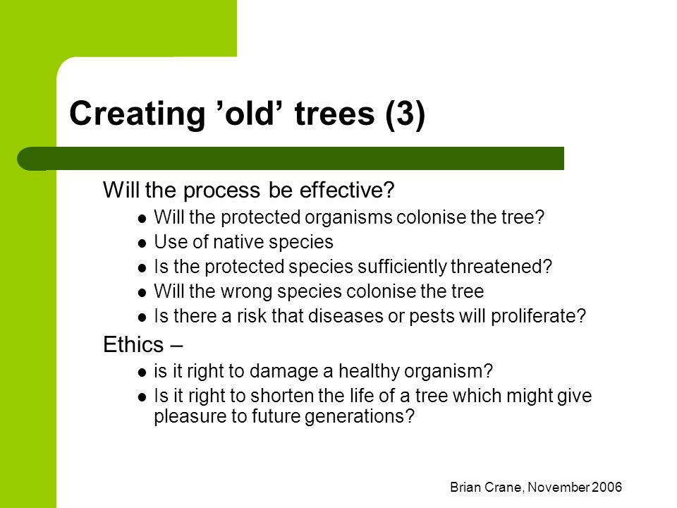Brian Crane, November 2006 Creating 'old' trees (3) Will the process be effective? Will the protected organisms colonise the tree? Use of native speci