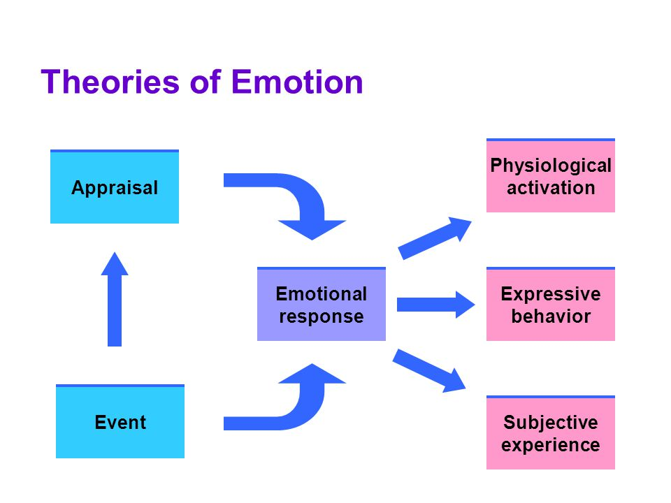 Theories of Emotion Appraisal Event Emotional response Physiological activation Expressive behavior Subjective experience