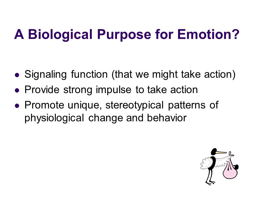 A Biological Purpose for Emotion? Signaling function (that we might take action) Provide strong impulse to take action Promote unique, stereotypical p