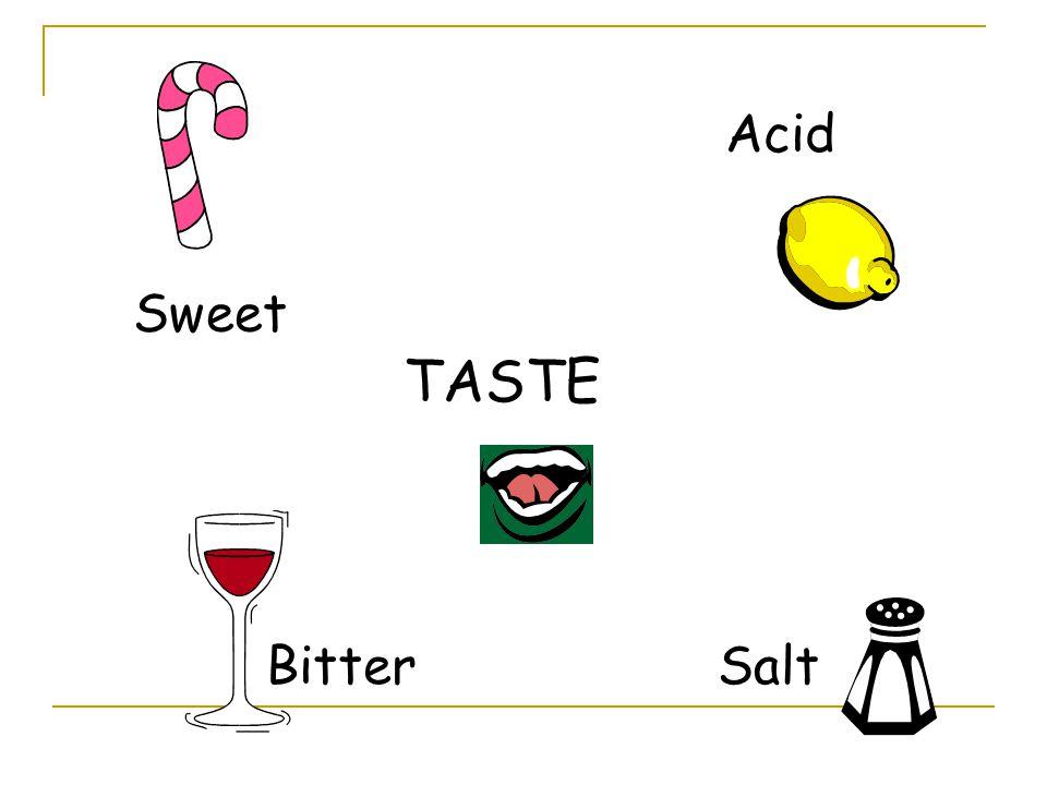 Sweet TASTE Acid BitterSalt