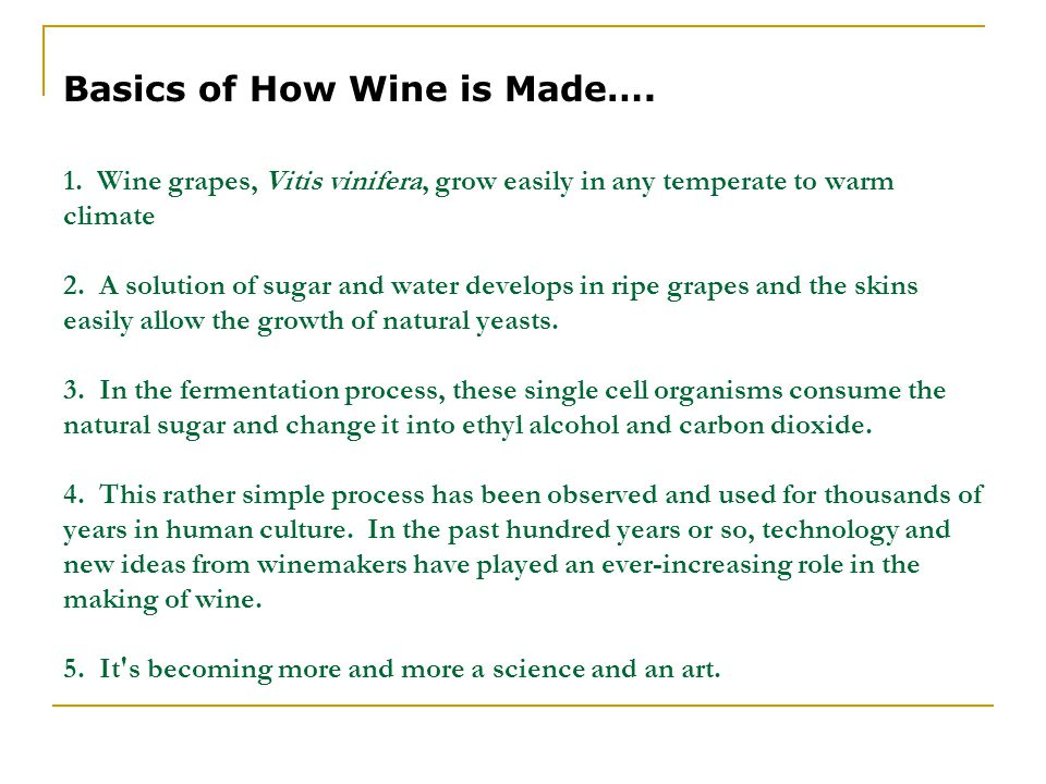 1. Wine grapes, Vitis vinifera, grow easily in any temperate to warm climate 2. A solution of sugar and water develops in ripe grapes and the skins ea