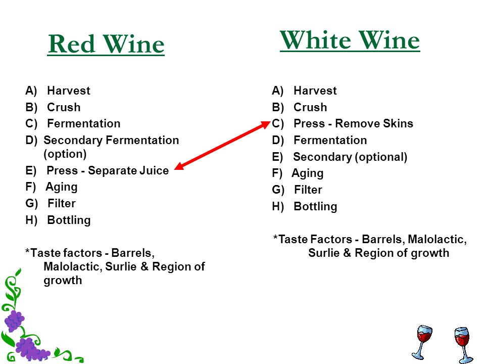 Red Wine A) Harvest B) Crush C) Fermentation D) Secondary Fermentation (option) E) Press - Separate Juice F) Aging G) Filter H) Bottling *Taste factor