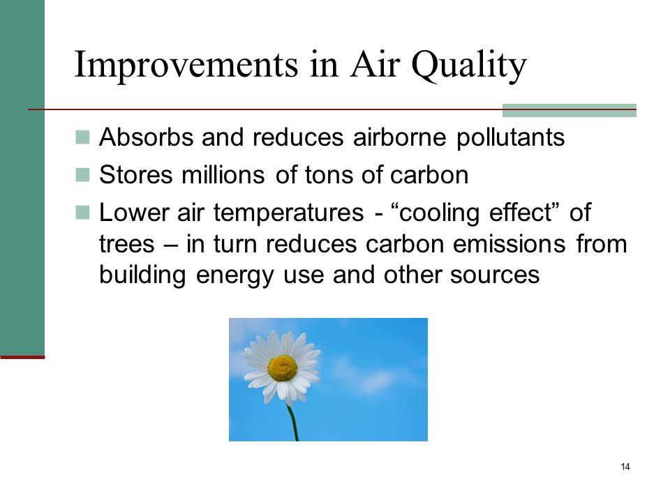 """14 Improvements in Air Quality Absorbs and reduces airborne pollutants Stores millions of tons of carbon Lower air temperatures - """"cooling effect"""" of"""