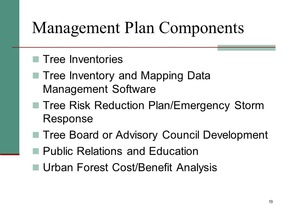 Management Plan Components Tree Inventories Tree Inventory and Mapping Data Management Software Tree Risk Reduction Plan/Emergency Storm Response Tree