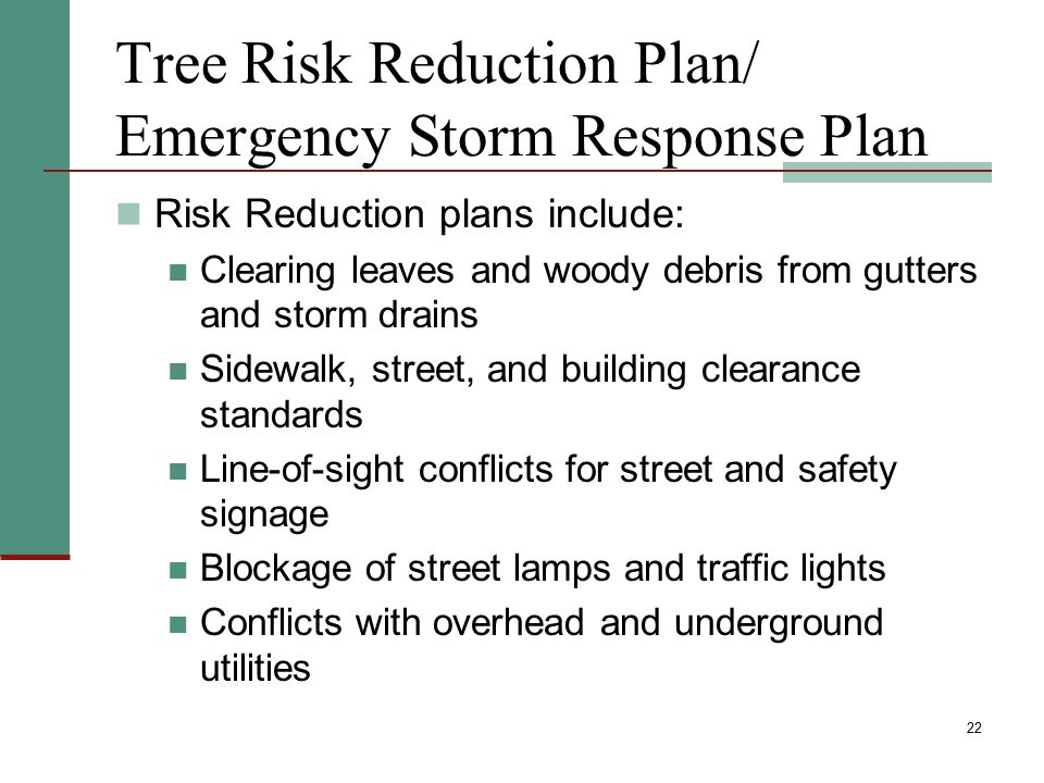 Tree Risk Reduction Plan/ Emergency Storm Response Plan Risk Reduction plans include: Clearing leaves and woody debris from gutters and storm drains S