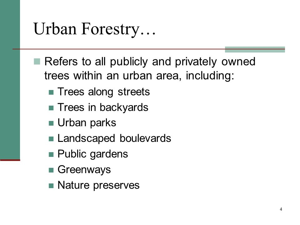 25 Public Relations and Education Have a computerized tree inventory and urban forest management plan accessible by the public – print hardcopy or on a website Other actions may include: Public meetings and/or seminars Monthly tree-related articles for the newspaper Letters to residents announcing tree maintenance or planting projects