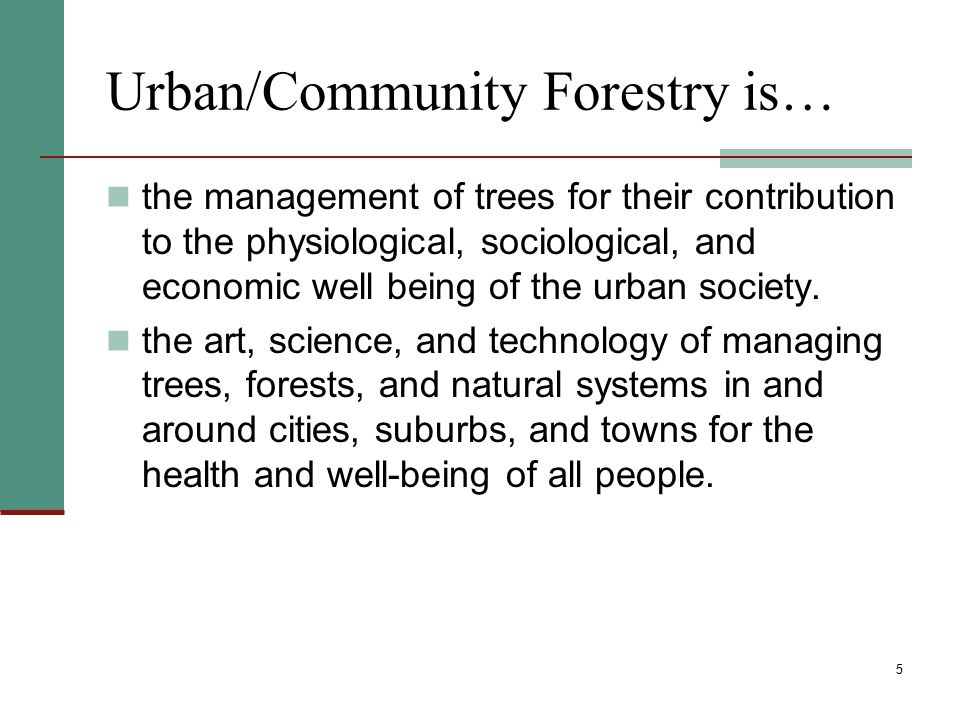 Threats to Urban/Community Forests Insects and diseases, (i.e., gypsy moth, emerald ash borer, fungi that cause Dutch elm disease, chestnut blight,) Wildfire/fire Natural catastrophic events Invasive species Development Climate change 16