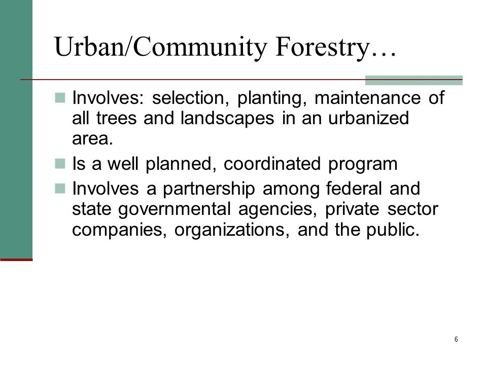 Why should my community do a tree inventory.