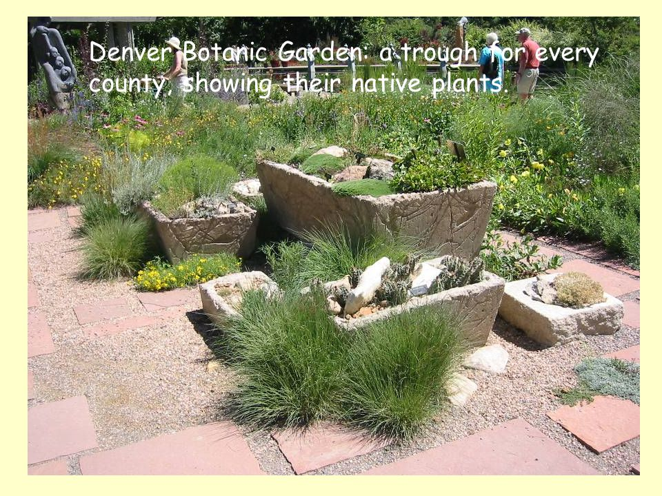 Denver Botanic Garden: a trough for every county, showing their native plants.