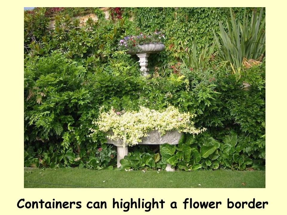 Containers can highlight a flower border