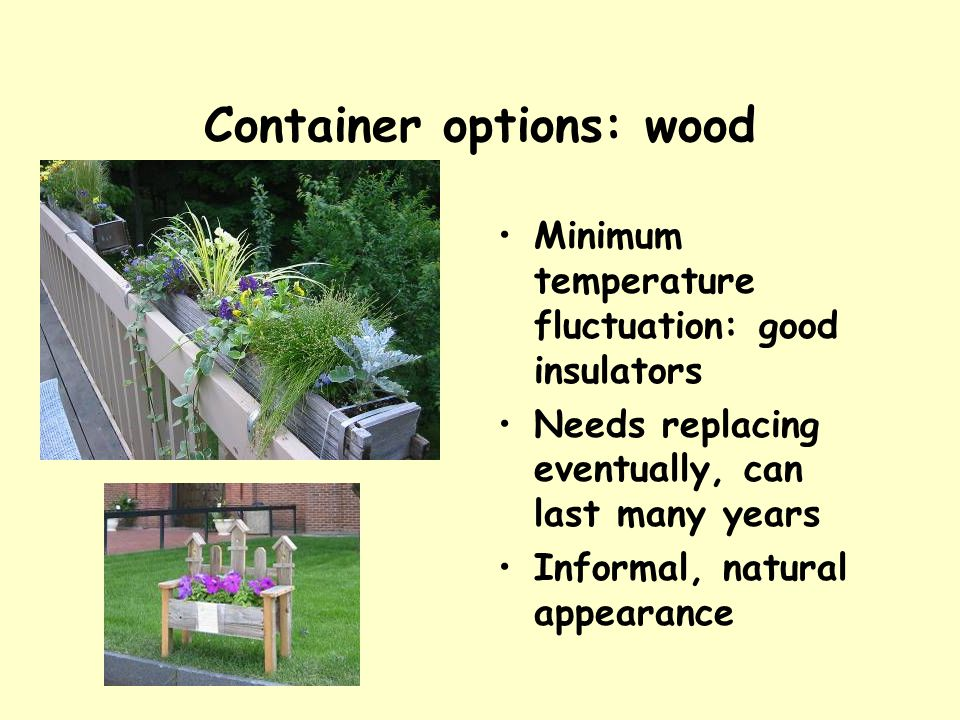 Container options: wood Minimum temperature fluctuation: good insulators Needs replacing eventually, can last many years Informal, natural appearance