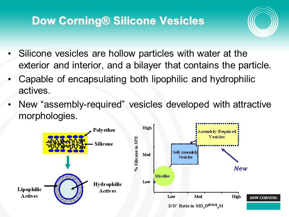 Silicone vesicles are hollow particles with water at the exterior and interior, and a bilayer that contains the particle. Capable of encapsulating bot