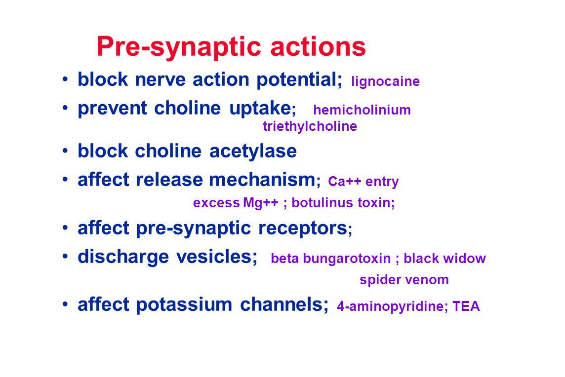 Post-synaptic actions competitive blockers; tubocurarine, pancuronium, gallamine, fazadinium, atracurium, vecuronium depolarising blockers; suxamethonium ( succinylcholine) odds and sods; decamethonium, dantroline