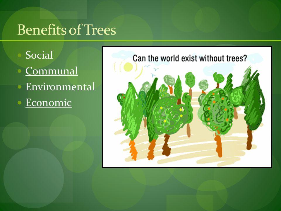 Benefits of Trees Social Communal Environmental Economic
