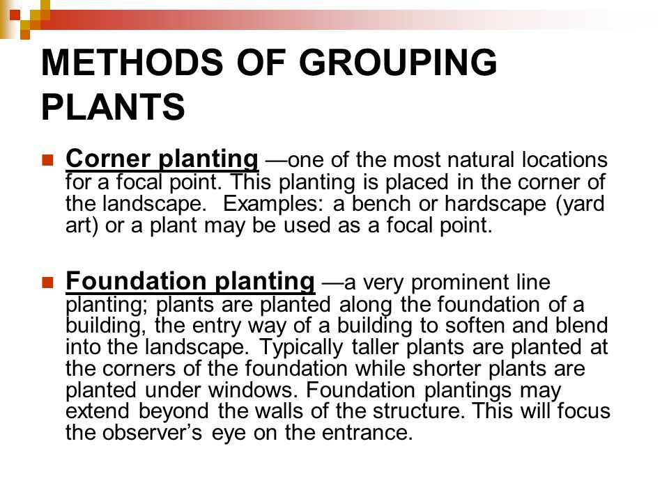 METHODS OF GROUPING PLANTS Corner planting —one of the most natural locations for a focal point.