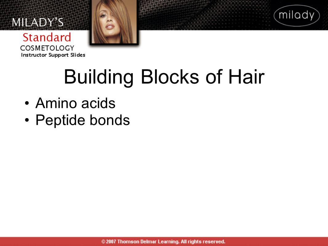 Building Blocks of Hair Amino acids Peptide bonds