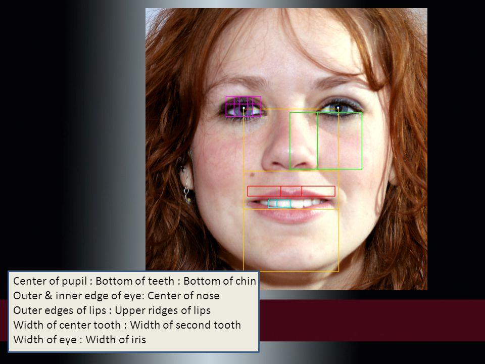 Center of pupil : Bottom of teeth : Bottom of chin Outer & inner edge of eye: Center of nose Outer edges of lips : Upper ridges of lips Width of center tooth : Width of second tooth Width of eye : Width of iris