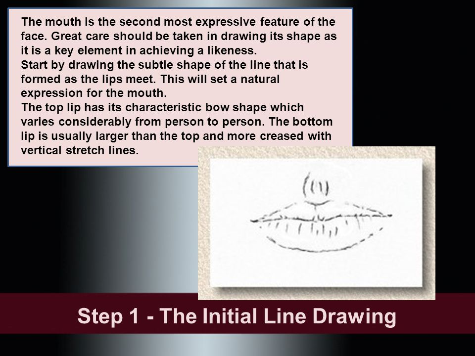 The mouth is the second most expressive feature of the face. Great care should be taken in drawing its shape as it is a key element in achieving a lik