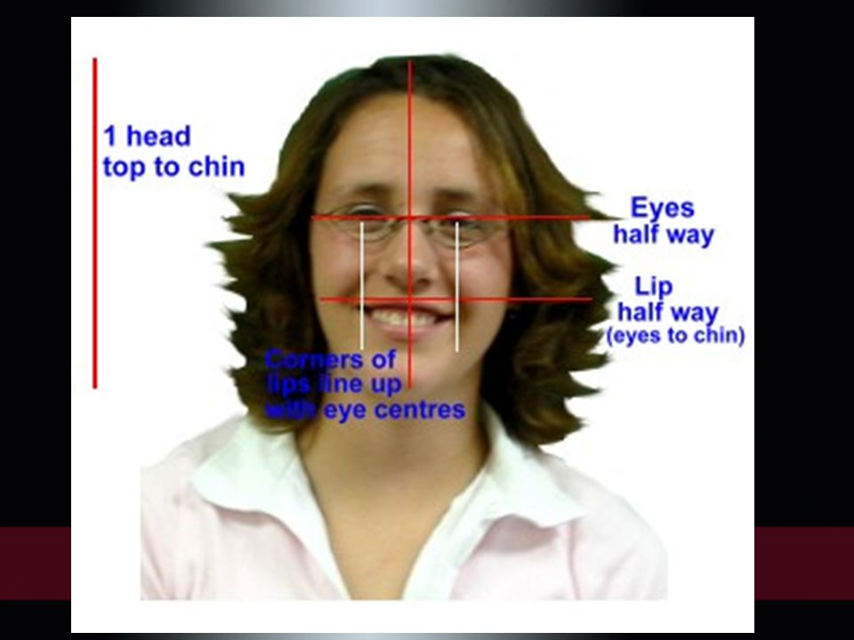 Place the ear, construct the nose (in a frontal view using two lines along the length), draw the jaw line and indicate the brows, forehead and cheeks (depending on the pose).