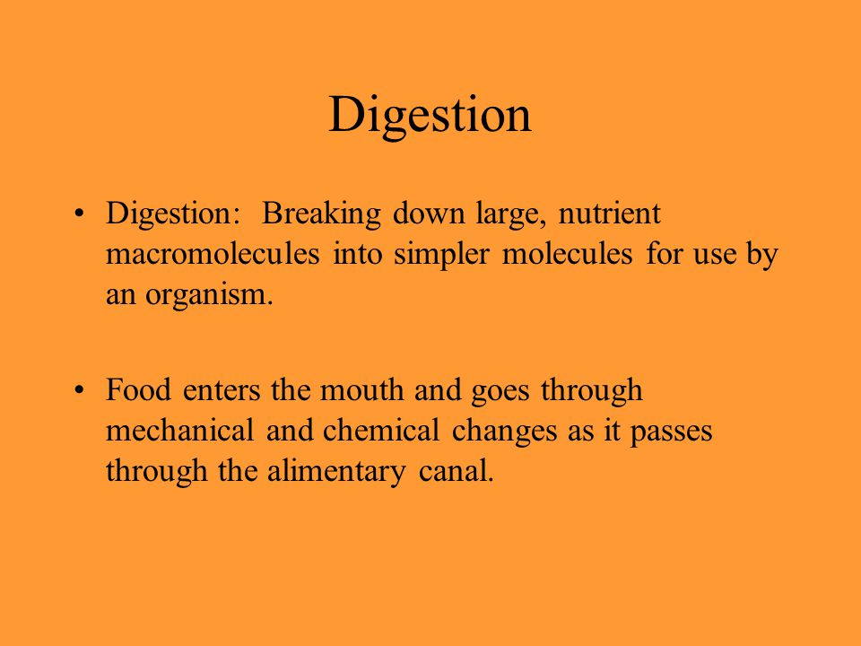 Digestion Digestion: Breaking down large, nutrient macromolecules into simpler molecules for use by an organism. Food enters the mouth and goes throug