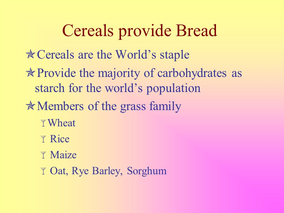 Cereals provide Bread  Cereals are the World's staple  Provide the majority of carbohydrates as starch for the world's population  Members of the grass family  Wheat  Rice  Maize  Oat, Rye Barley, Sorghum