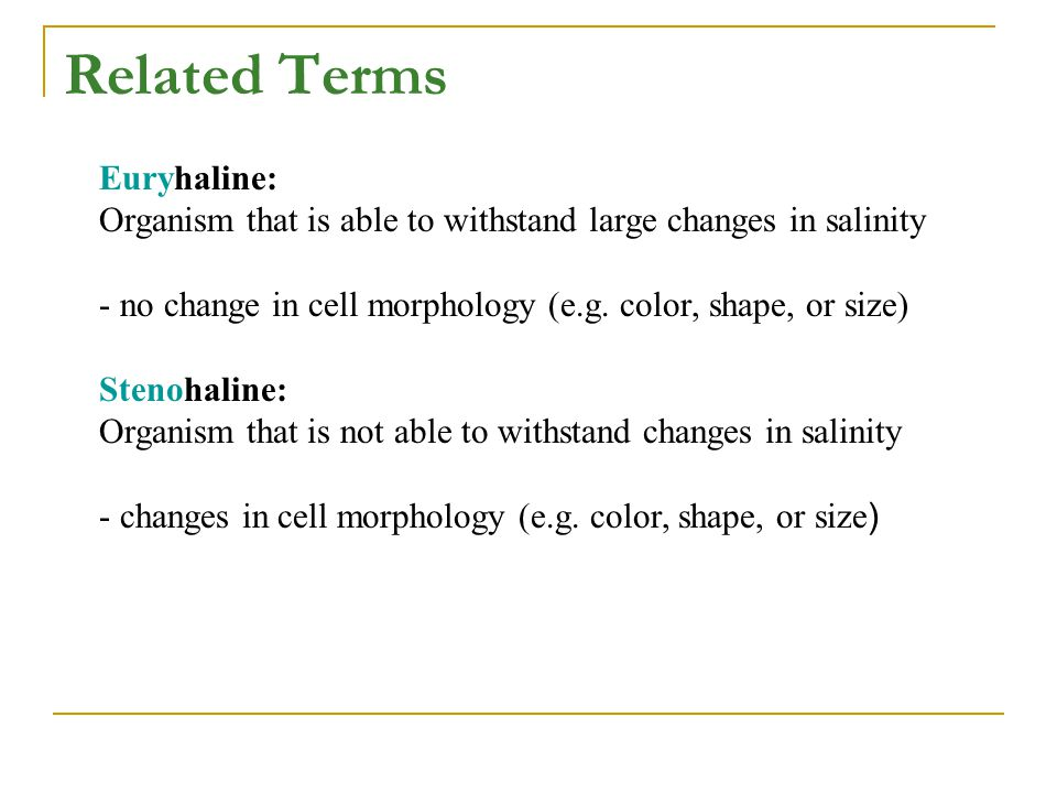 Related Terms Euryhaline: Organism that is able to withstand large changes in salinity - no change in cell morphology (e.g. color, shape, or size) Ste