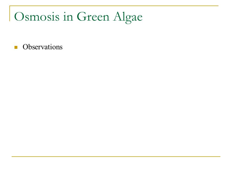 Osmosis in Green Algae Observations