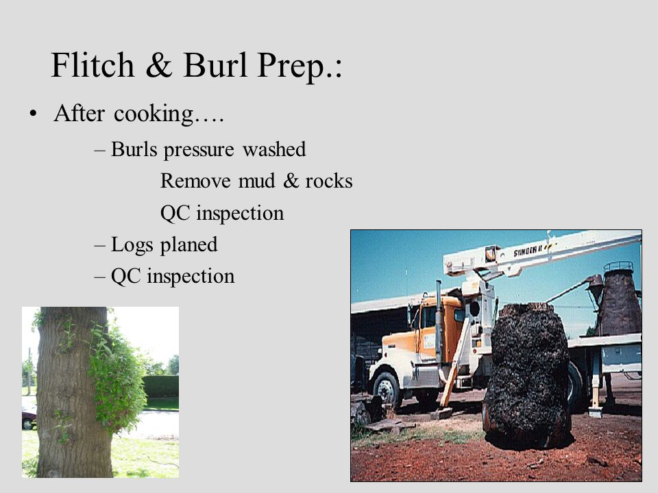 Flitch & Burl Prep.: After cooking….