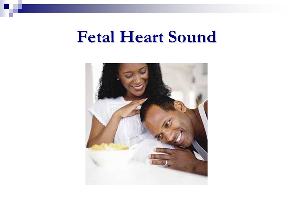 Fetal Heart Sound