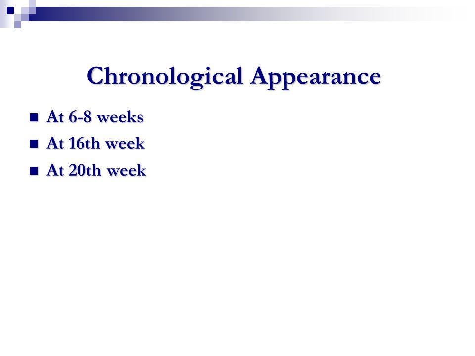 Chronological Appearance At 6-8 weeks At 6-8 weeks At 16th week At 16th week At 20th week At 20th week