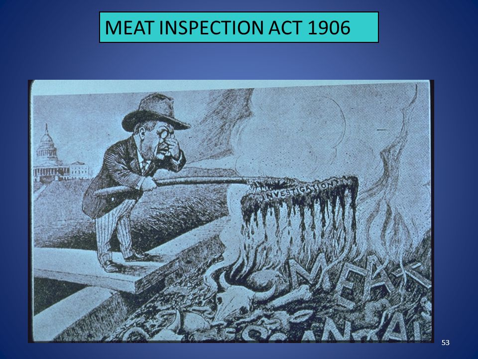 53 MEAT INSPECTION ACT 1906
