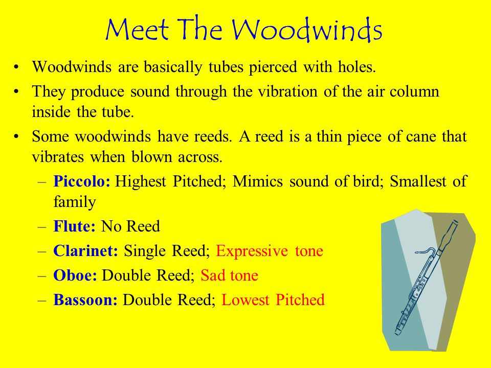 Meet The Woodwinds Woodwinds are basically tubes pierced with holes.