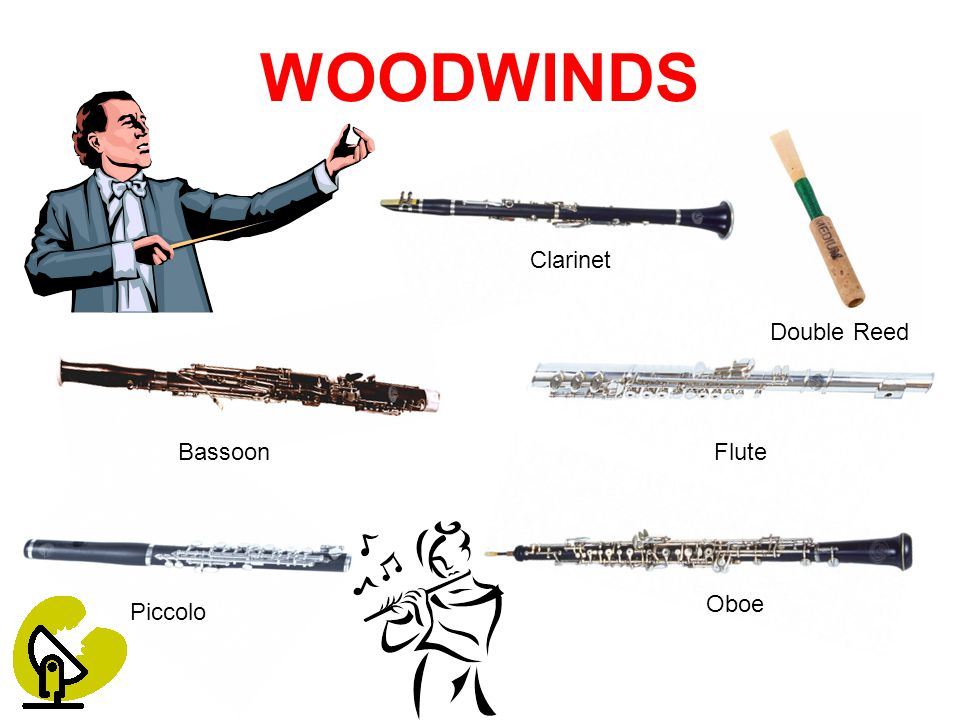 WOODWINDS Clarinet FluteBassoon Piccolo Oboe Double Reed