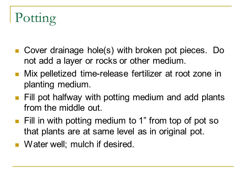 Potting Cover drainage hole(s) with broken pot pieces.
