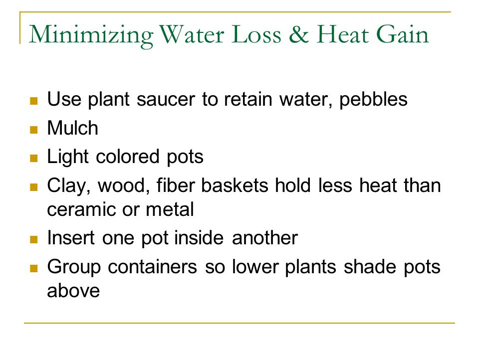 Minimizing Water Loss & Heat Gain Use plant saucer to retain water, pebbles Mulch Light colored pots Clay, wood, fiber baskets hold less heat than ceramic or metal Insert one pot inside another Group containers so lower plants shade pots above
