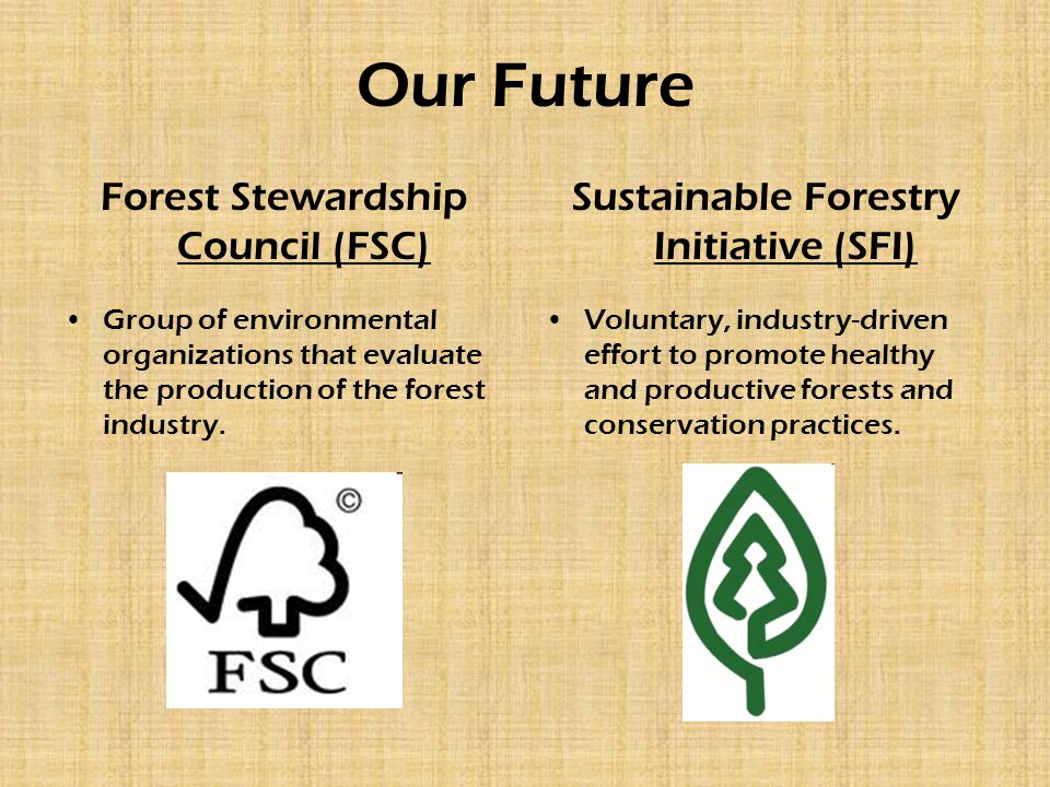Our Future Forest Stewardship Council (FSC) Group of environmental organizations that evaluate the production of the forest industry.