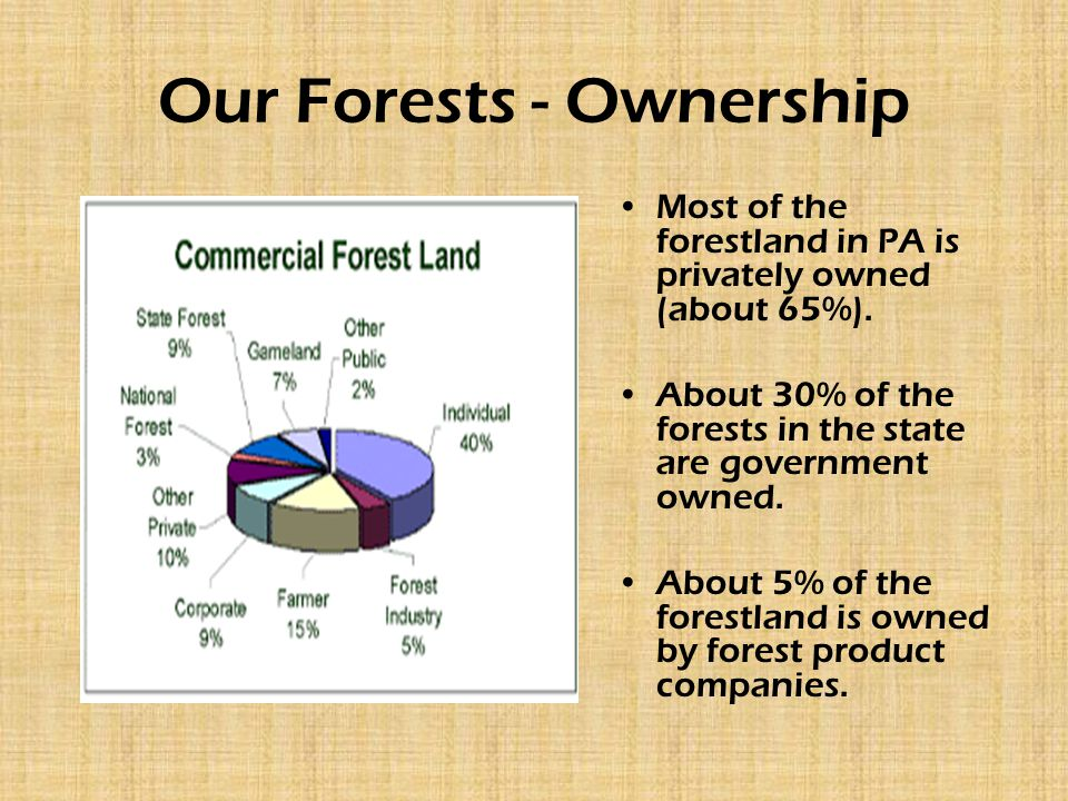 Our Forests - Ownership Most of the forestland in PA is privately owned (about 65%). About 30% of the forests in the state are government owned. About