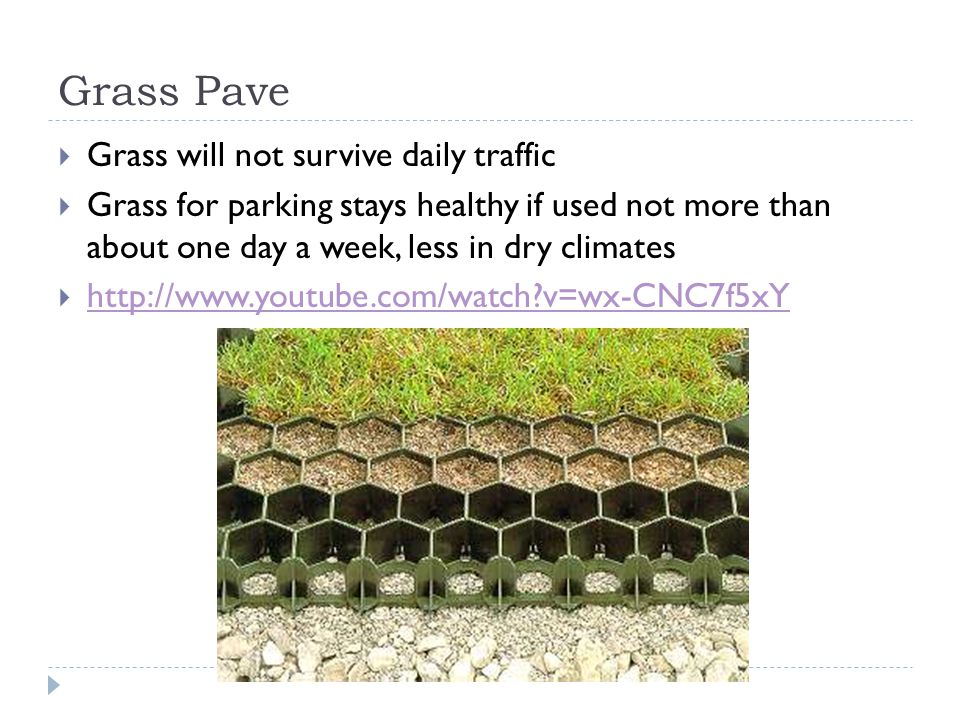 Grass Pave  Grass will not survive daily traffic  Grass for parking stays healthy if used not more than about one day a week, less in dry climates  http://www.youtube.com/watch v=wx-CNC7f5xY http://www.youtube.com/watch v=wx-CNC7f5xY