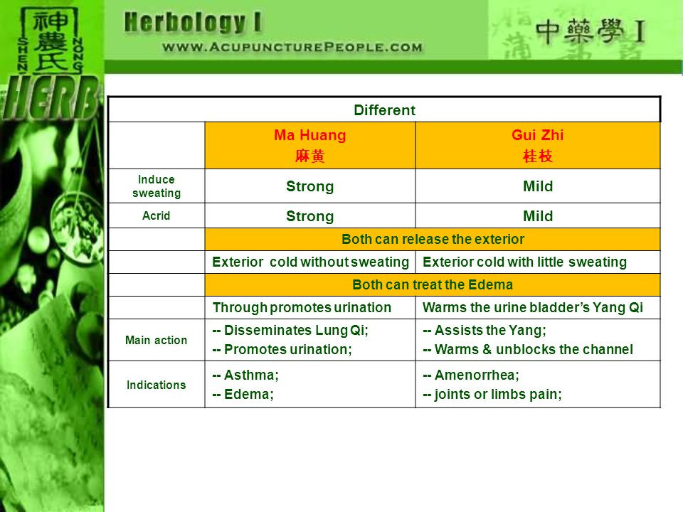 Different Ma Huang 麻黄 Xiang Ru 香薷 Induce sweating Disseminates lung Qi & open the skin; Disseminates the oppressed Yang Qi Release the exterior coldExpel the summer-damp Reduce edema Wind edema;Damp edema; Exterior coldGot exterior cold in winter;Got exterior cold in summer; Indication-- asthma;-- dampness in the middle jiao
