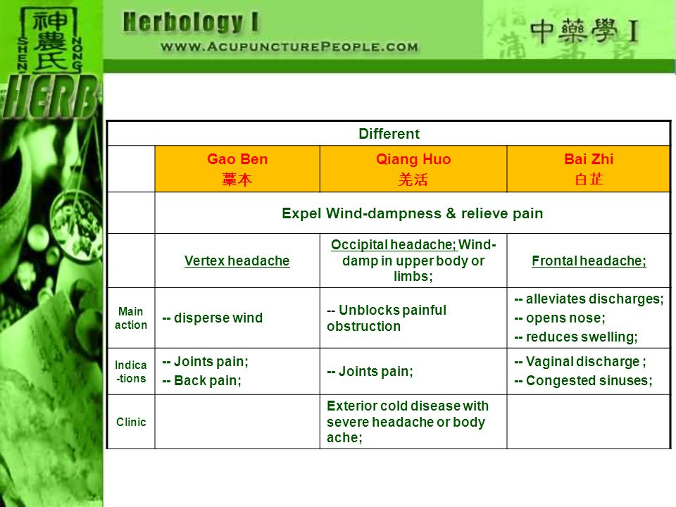 Different Gao Ben 藁本 Qiang Huo 羌活 Bai Zhi 白芷 Expel Wind-dampness & relieve pain Vertex headache Occipital headache; Wind- damp in upper body or limbs;