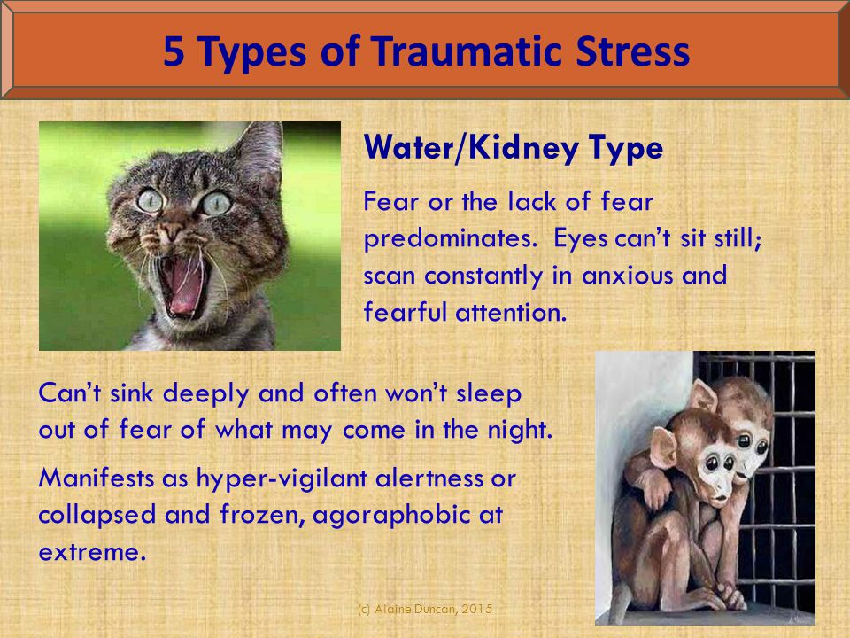 (c) Alaine Duncan, 2015 5 Types of Traumatic Stress Water/Kidney Type Fear or the lack of fear predominates. Eyes can't sit still; scan constantly in