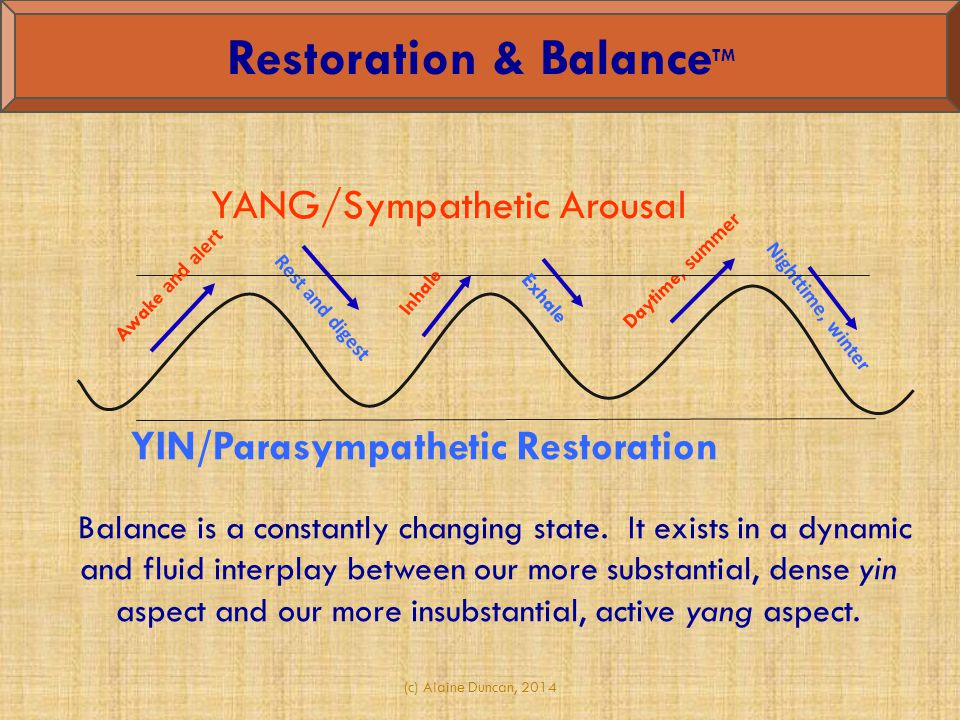 Rest and digest Daytime, summer Nighttime, winter Awake and alert YANG/Sympathetic Arousal YIN/Parasympathetic Restoration Inhale Exhale Balance is a