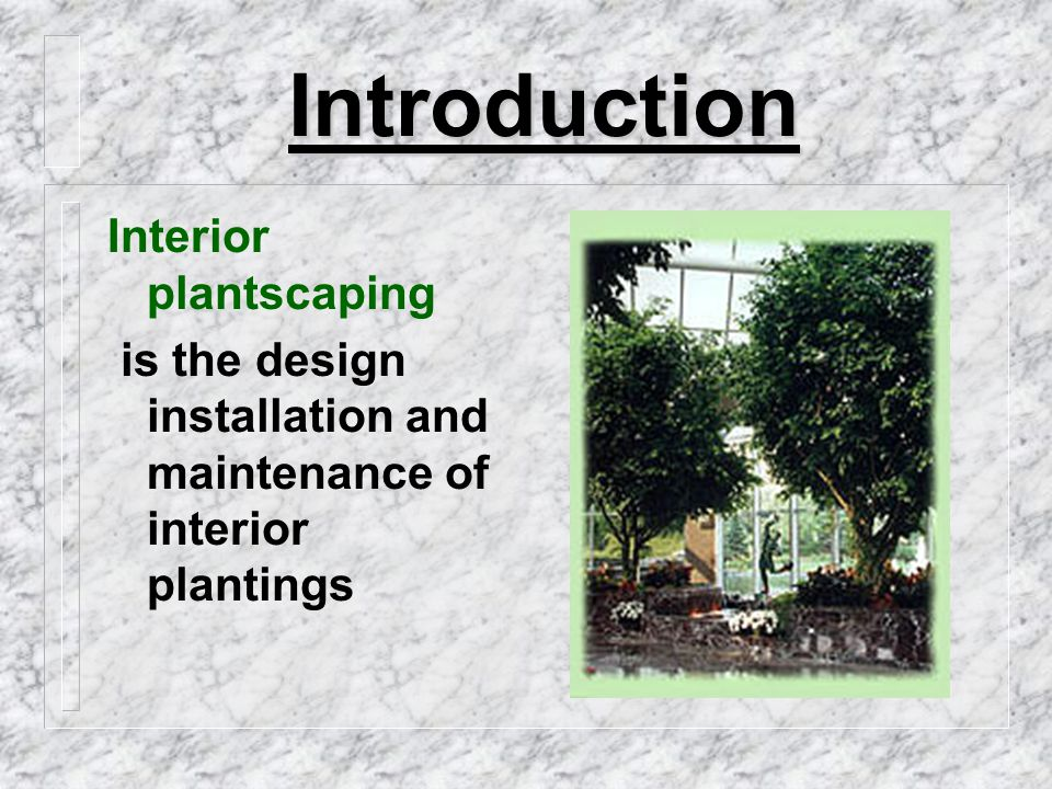 Plant Requirements Light:  most limiting factor to growing plants indoors  either select plant for light levels or change light intensity to suit the plant chosen  minimum light intensity is that which permits plant to function at slightly exceeding the compensation point