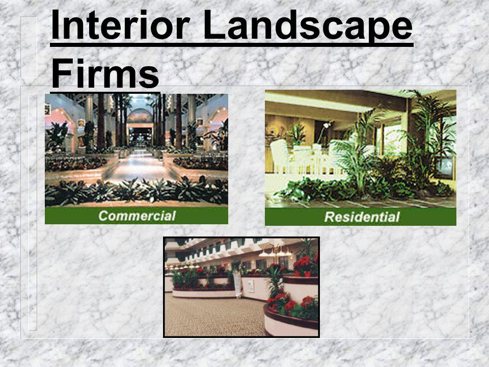 Interior Landscape Firms