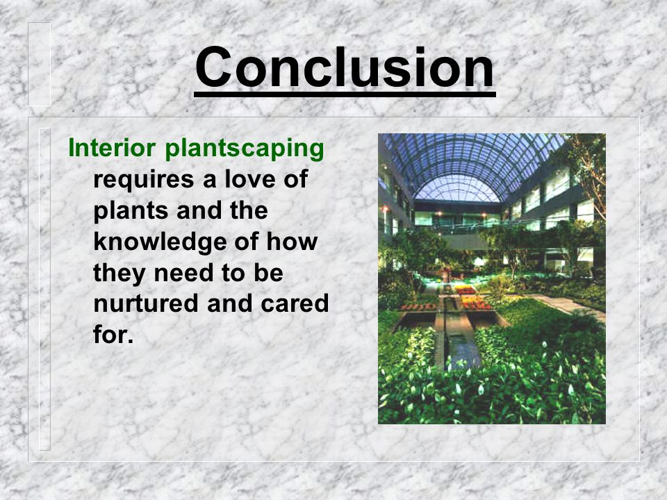 Conclusion Interior plantscaping requires a love of plants and the knowledge of how they need to be nurtured and cared for.