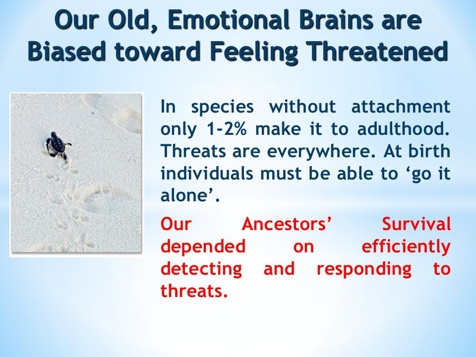 Our Old, Emotional Brains are Biased toward Feeling Threatened In species without attachment only 1-2% make it to adulthood.