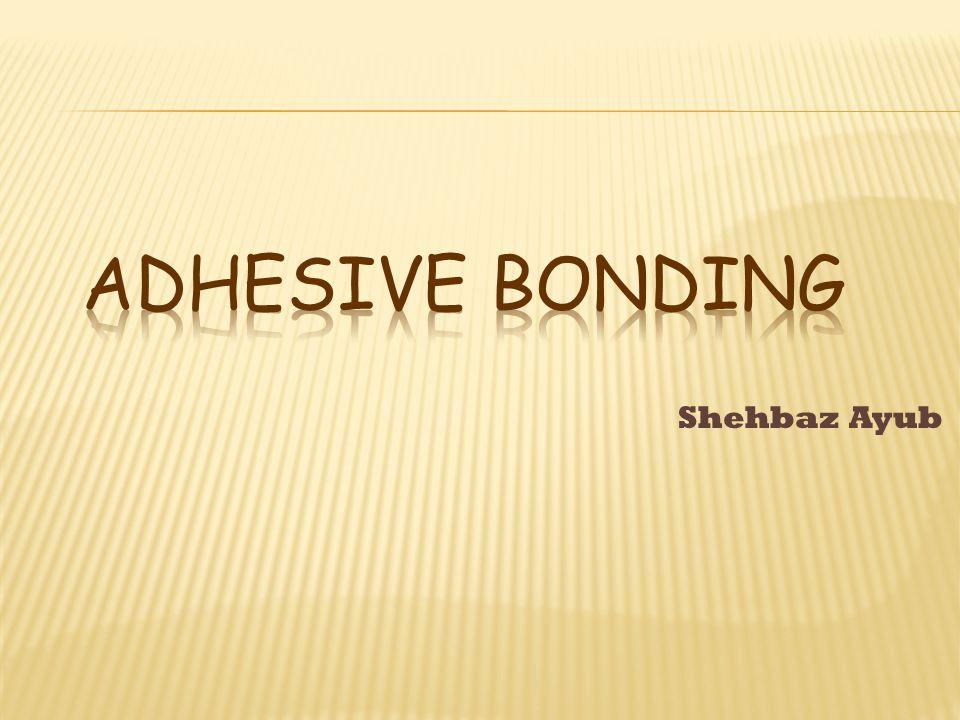 Shehbaz Ayub